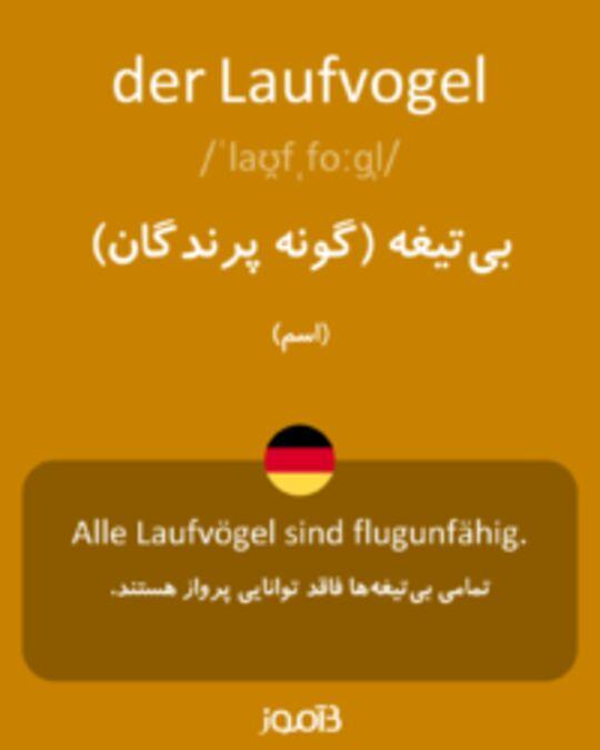 تصویر der Laufvogel - دیکشنری انگلیسی بیاموز