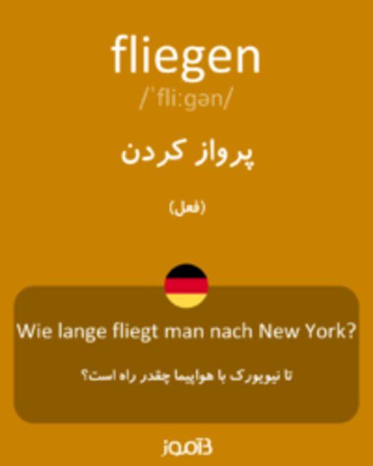 تصویر fliegen - دیکشنری انگلیسی بیاموز