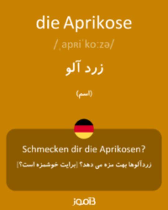 تصویر die Aprikose - دیکشنری انگلیسی بیاموز