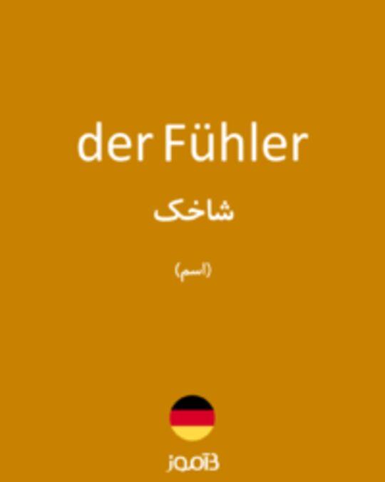 تصویر der Fühler - دیکشنری انگلیسی بیاموز