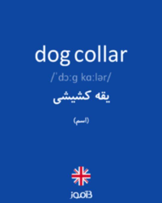 تصویر dog collar - دیکشنری انگلیسی بیاموز