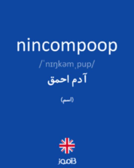 تصویر nincompoop - دیکشنری انگلیسی بیاموز