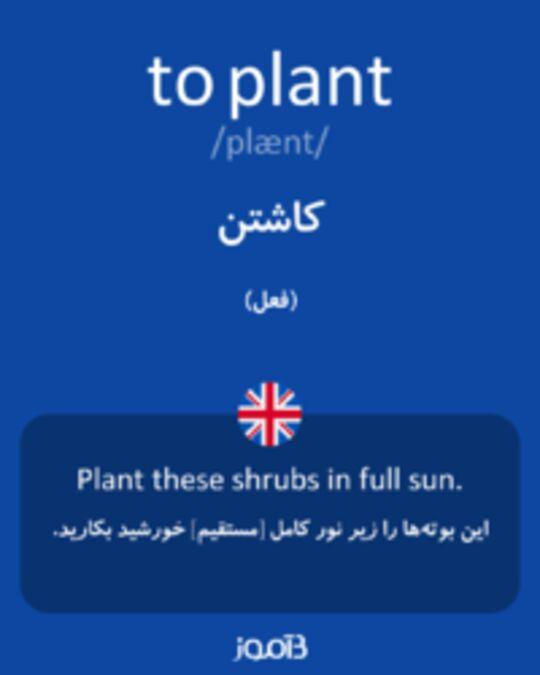 تصویر to plant - دیکشنری انگلیسی بیاموز