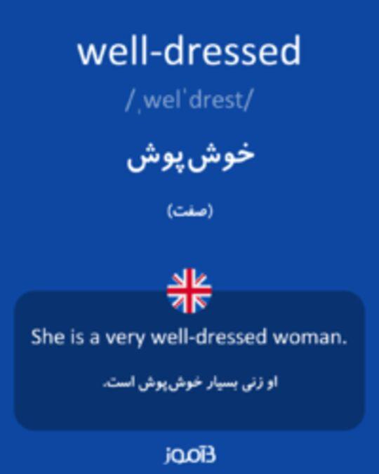 تصویر well-dressed - دیکشنری انگلیسی بیاموز