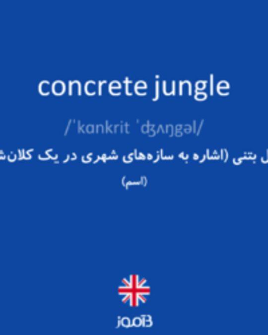 تصویر concrete jungle - دیکشنری انگلیسی بیاموز