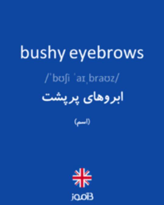 تصویر bushy eyebrows - دیکشنری انگلیسی بیاموز