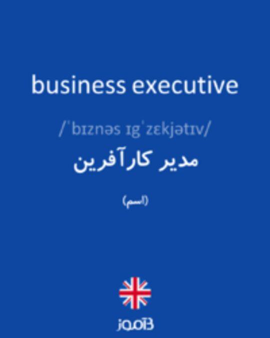 تصویر business executive - دیکشنری انگلیسی بیاموز