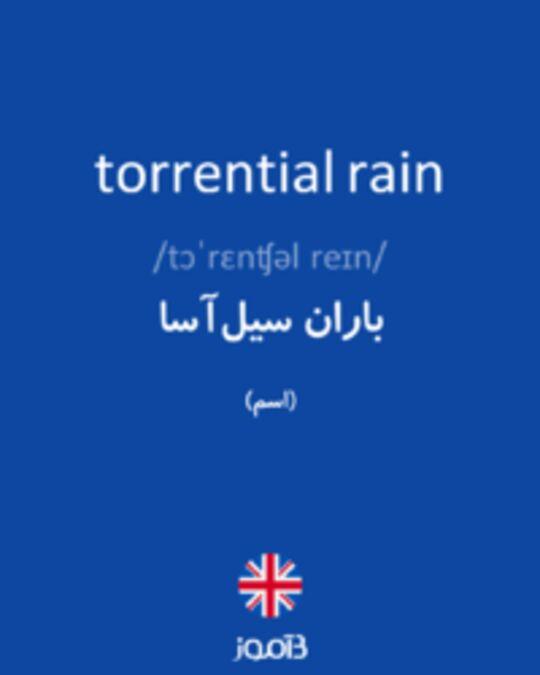 تصویر torrential rain - دیکشنری انگلیسی بیاموز