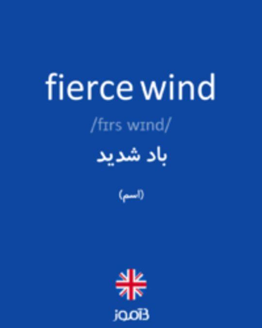 تصویر fierce wind - دیکشنری انگلیسی بیاموز