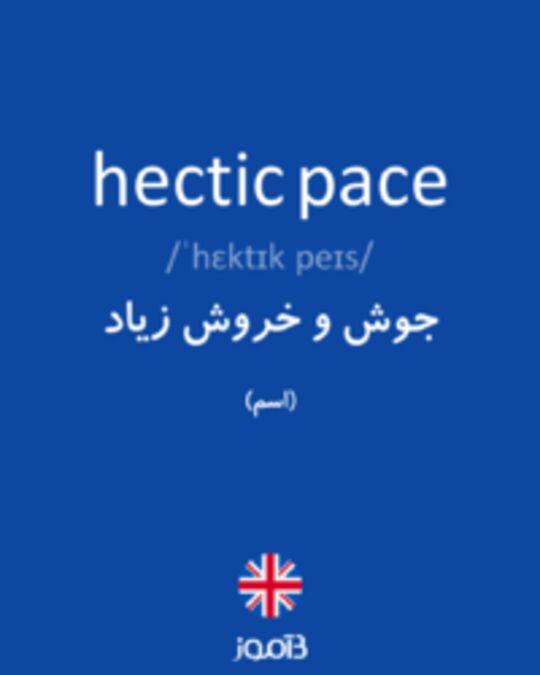 تصویر hectic pace - دیکشنری انگلیسی بیاموز