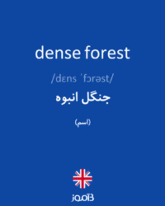تصویر dense forest - دیکشنری انگلیسی بیاموز