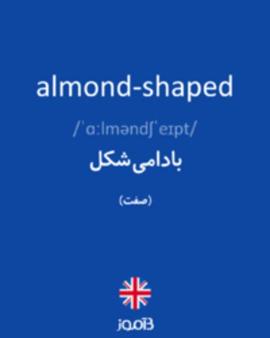 تصویر almond-shaped - دیکشنری انگلیسی بیاموز