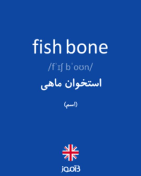 تصویر fish bone - دیکشنری انگلیسی بیاموز