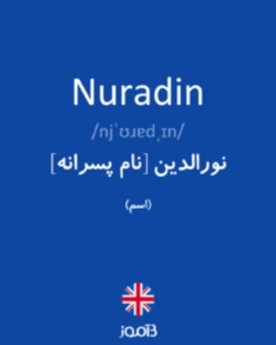 تصویر Nuradin - دیکشنری انگلیسی بیاموز