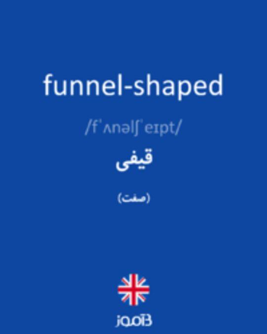 تصویر funnel-shaped - دیکشنری انگلیسی بیاموز