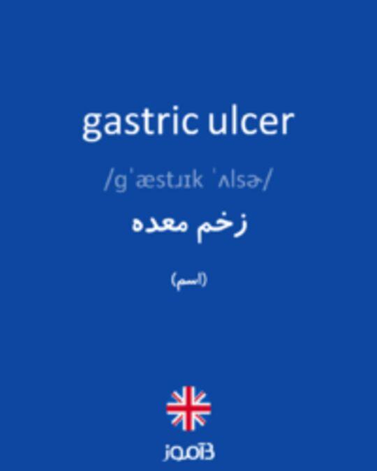 تصویر gastric ulcer - دیکشنری انگلیسی بیاموز