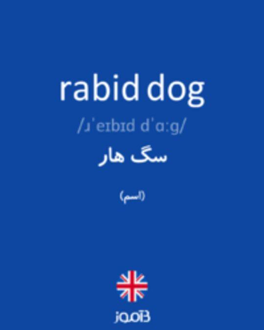 تصویر rabid dog - دیکشنری انگلیسی بیاموز