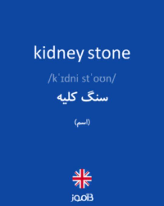 تصویر kidney stone - دیکشنری انگلیسی بیاموز