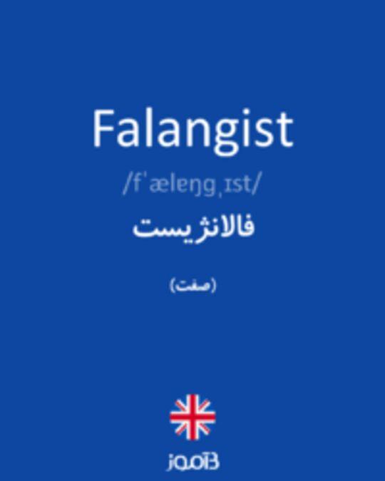 تصویر Falangist - دیکشنری انگلیسی بیاموز