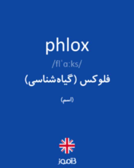 تصویر phlox - دیکشنری انگلیسی بیاموز