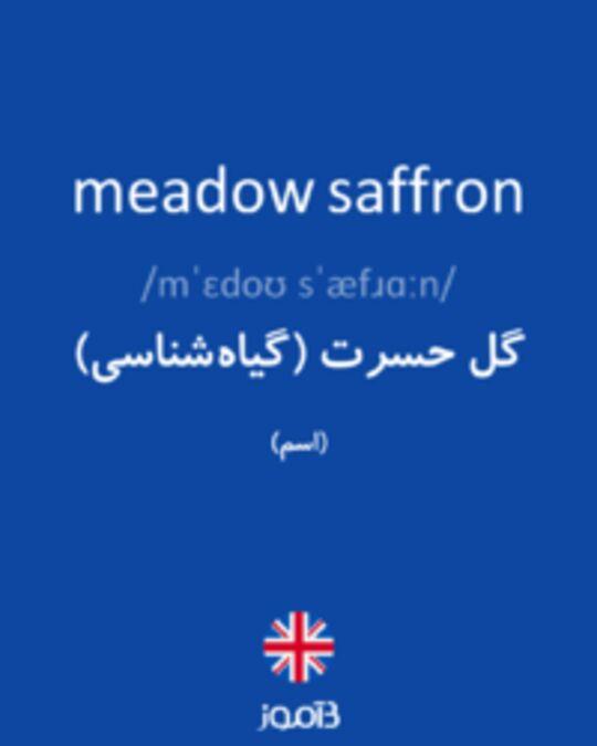 تصویر meadow saffron - دیکشنری انگلیسی بیاموز