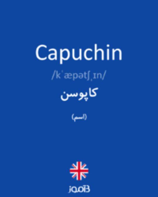 تصویر Capuchin - دیکشنری انگلیسی بیاموز