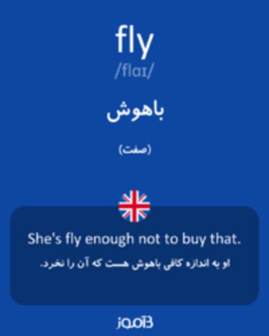 تصویر fly - دیکشنری انگلیسی بیاموز