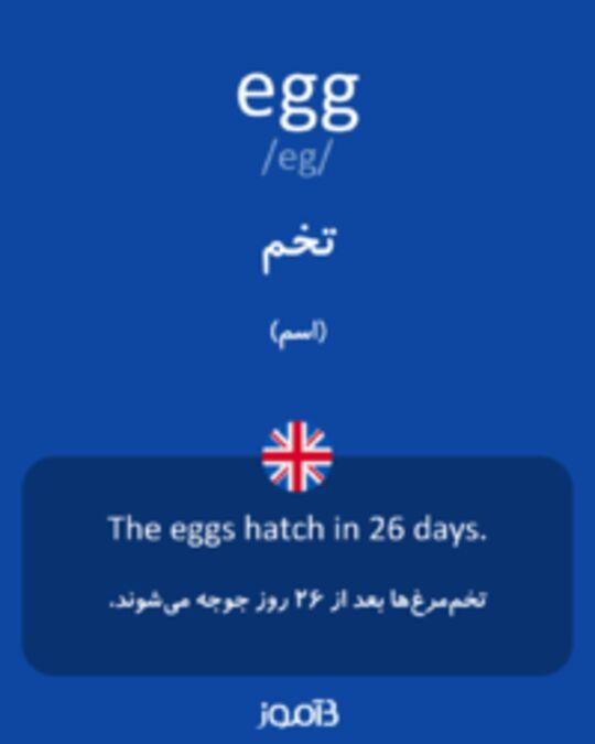 تصویر egg - دیکشنری انگلیسی بیاموز
