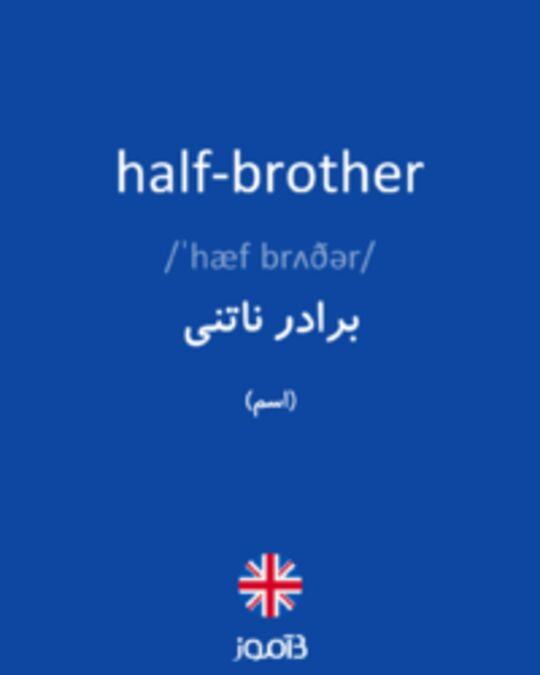 تصویر half-brother - دیکشنری انگلیسی بیاموز