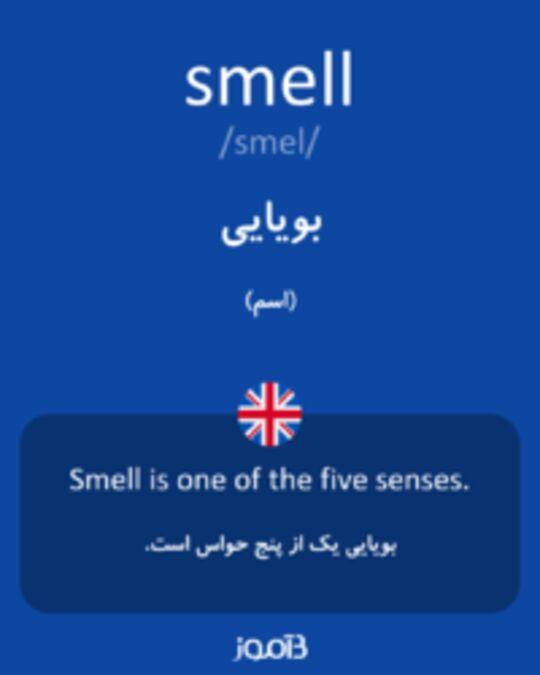 تصویر smell - دیکشنری انگلیسی بیاموز