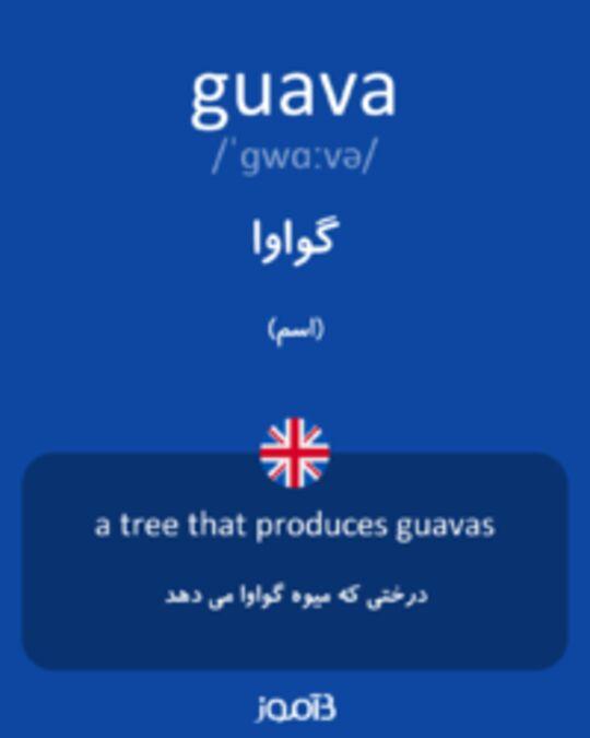 تصویر guava - دیکشنری انگلیسی بیاموز