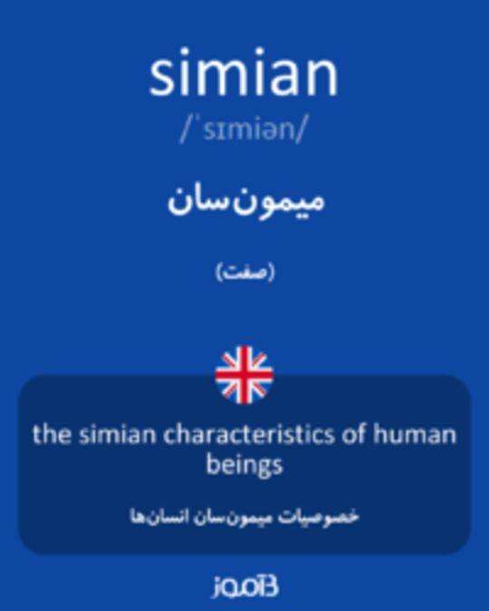 تصویر simian - دیکشنری انگلیسی بیاموز