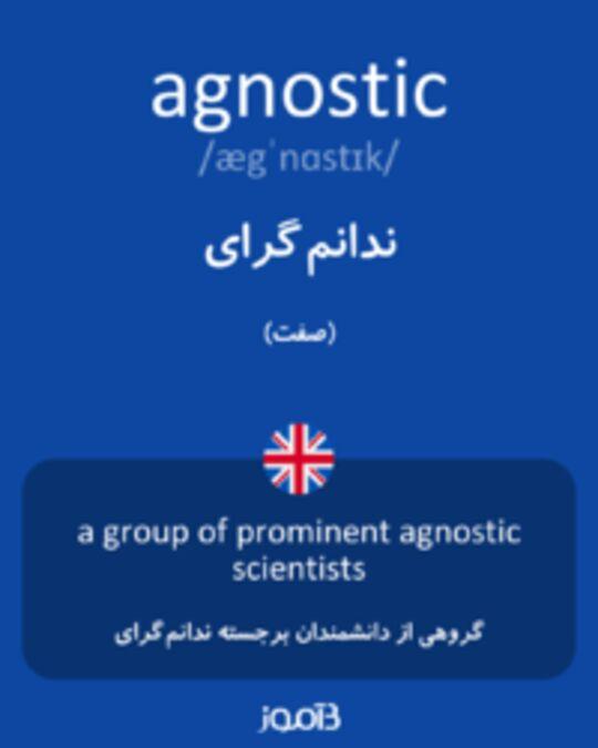 تصویر agnostic - دیکشنری انگلیسی بیاموز