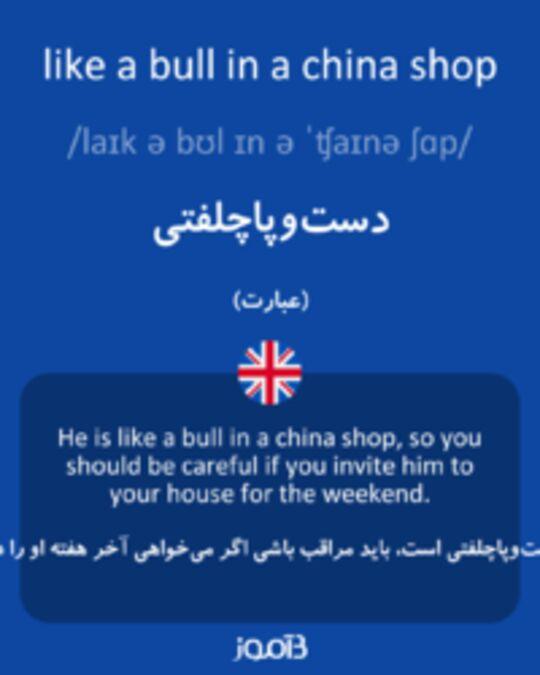 تصویر like a bull in a china shop - دیکشنری انگلیسی بیاموز