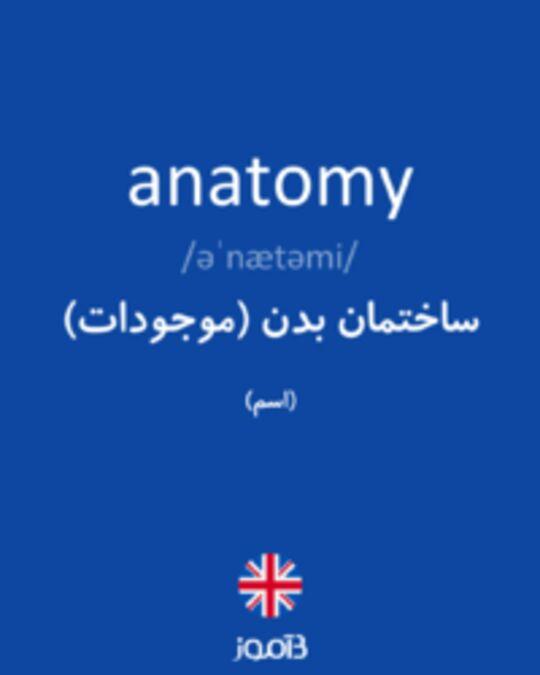 تصویر anatomy - دیکشنری انگلیسی بیاموز