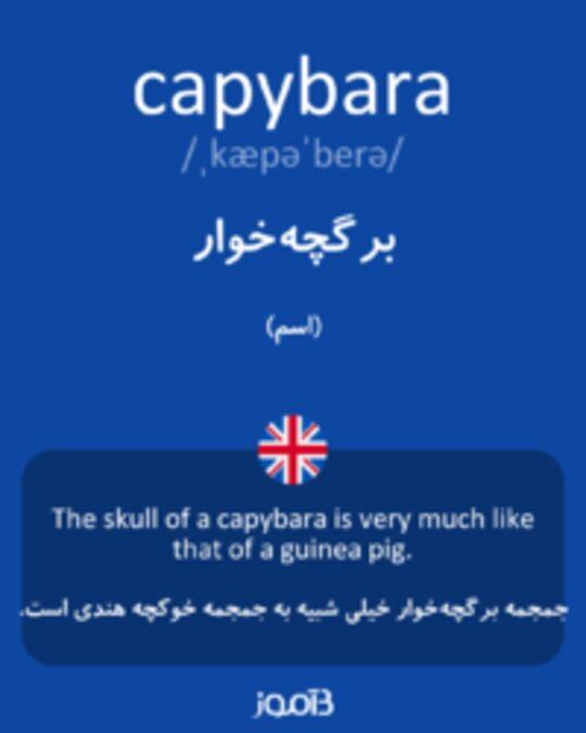 تصویر capybara - دیکشنری انگلیسی بیاموز
