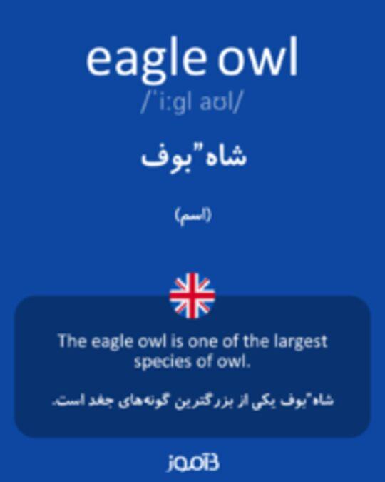 تصویر eagle owl - دیکشنری انگلیسی بیاموز
