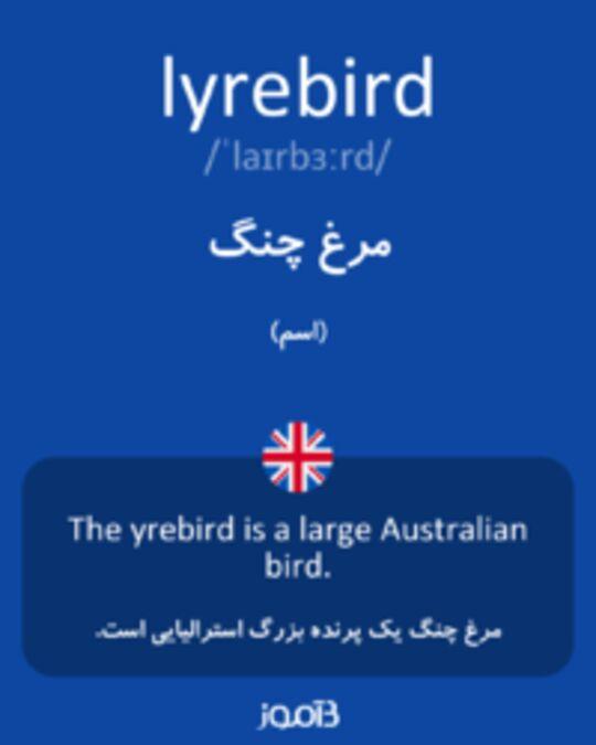 تصویر lyrebird - دیکشنری انگلیسی بیاموز