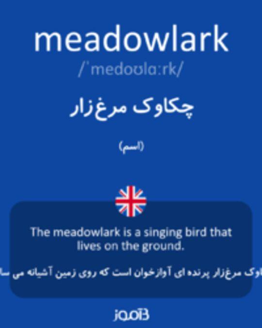 تصویر meadowlark - دیکشنری انگلیسی بیاموز