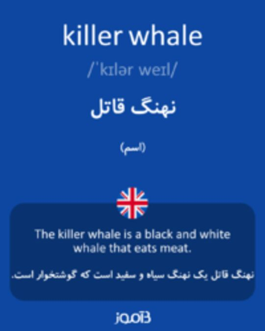 تصویر killer whale - دیکشنری انگلیسی بیاموز