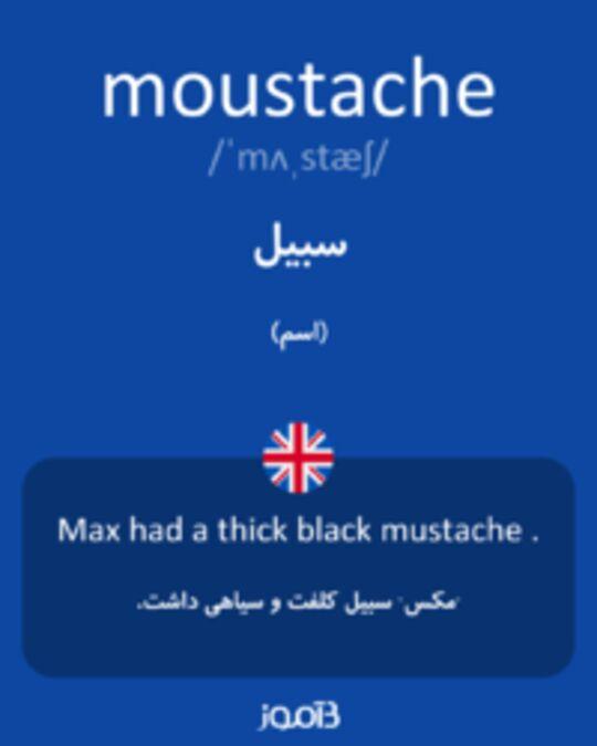تصویر moustache - دیکشنری انگلیسی بیاموز