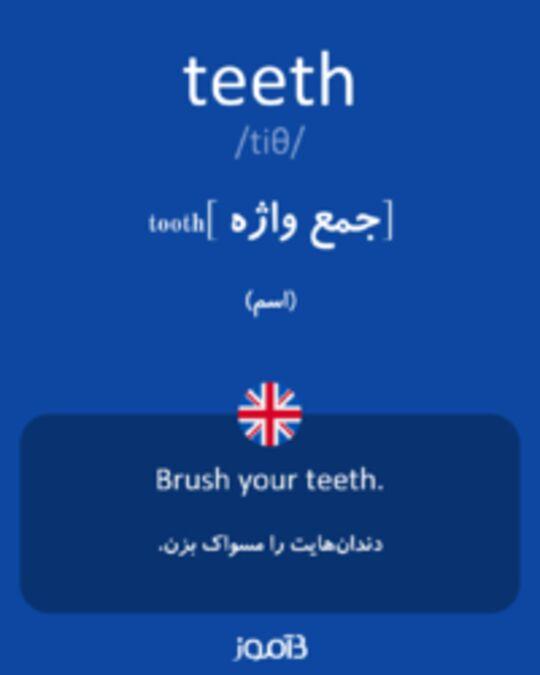 تصویر teeth - دیکشنری انگلیسی بیاموز