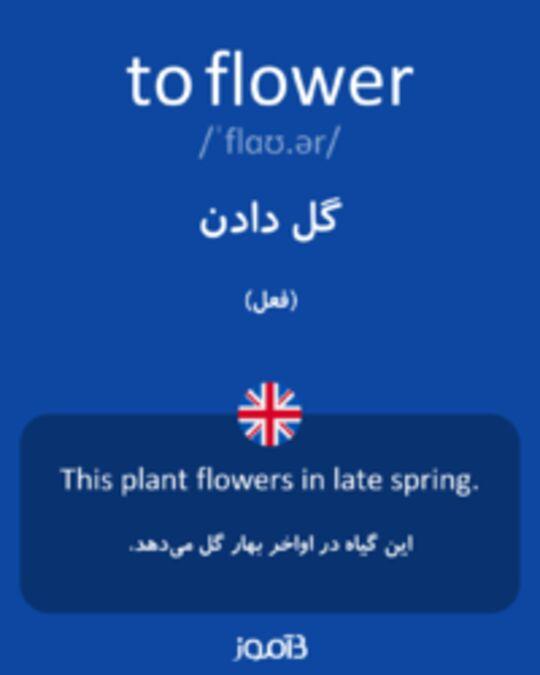 تصویر to flower - دیکشنری انگلیسی بیاموز