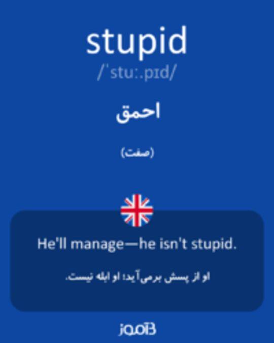 تصویر stupid - دیکشنری انگلیسی بیاموز