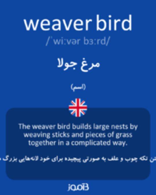 تصویر weaver bird - دیکشنری انگلیسی بیاموز