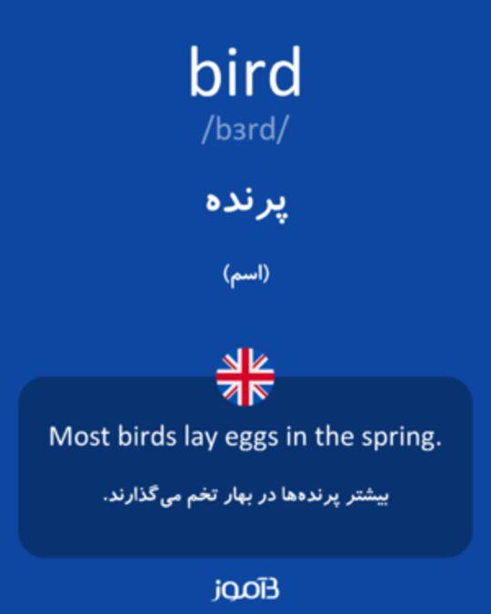 تصویر معنی و ترجمه لغت sugar - دیکشنری انگلیسی  به فارسی