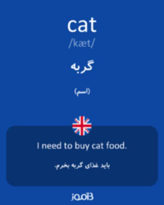 تصویر cat - دیکشنری انگلیسی بیاموز