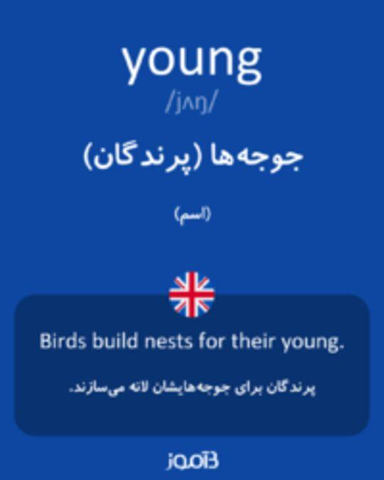تصویر young - دیکشنری انگلیسی بیاموز