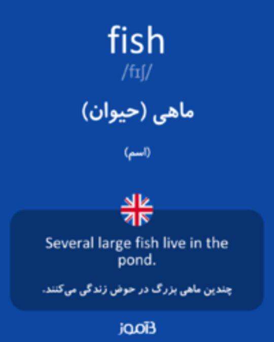 تصویر fish - دیکشنری انگلیسی بیاموز