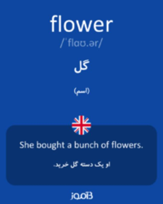 تصویر flower - دیکشنری انگلیسی بیاموز